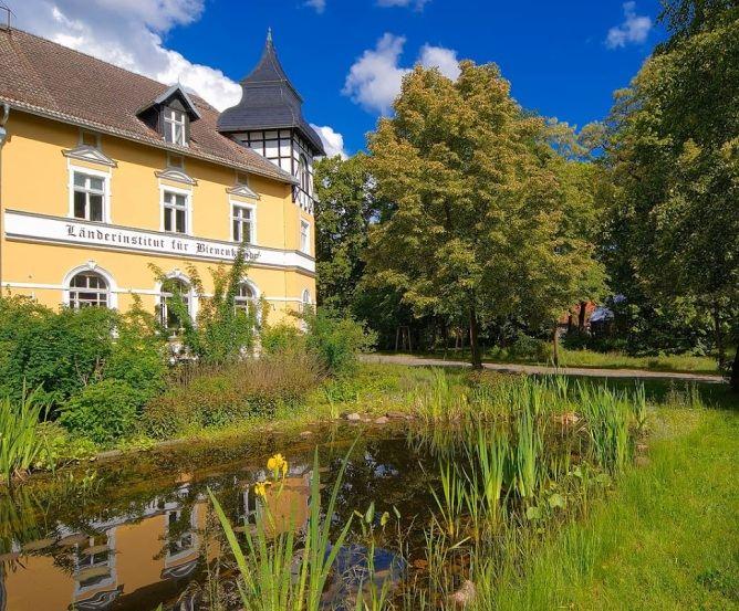 Länderinstitut für Bienenkunde Hohen Neuendorf © Frank Liebke
