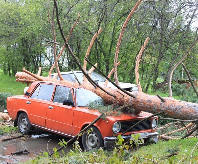 Kasko-Versicherung - Zahlungsversäumnis