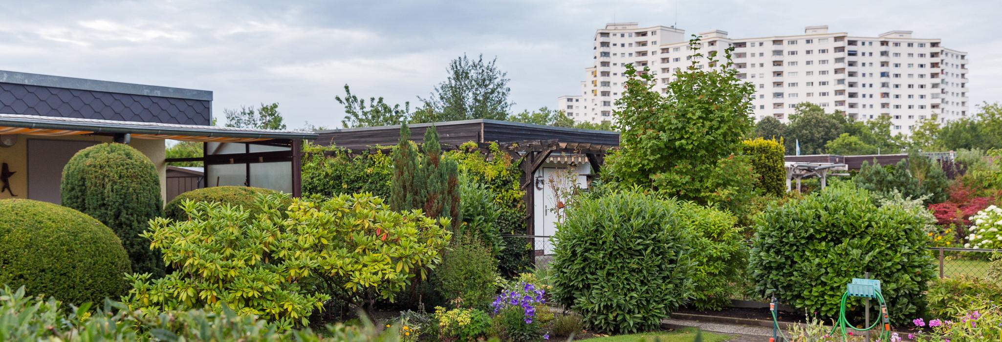 Kleingartenversicherung - Im eignen Garten gut versichert