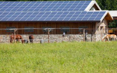 Vom Landwirt zum Energiewirt
