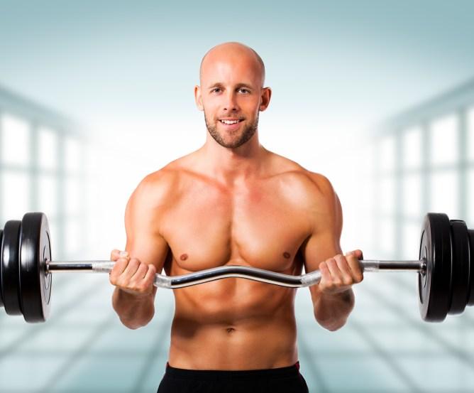 Muskulatur || Muskel - Skelett - Skelettmuskel