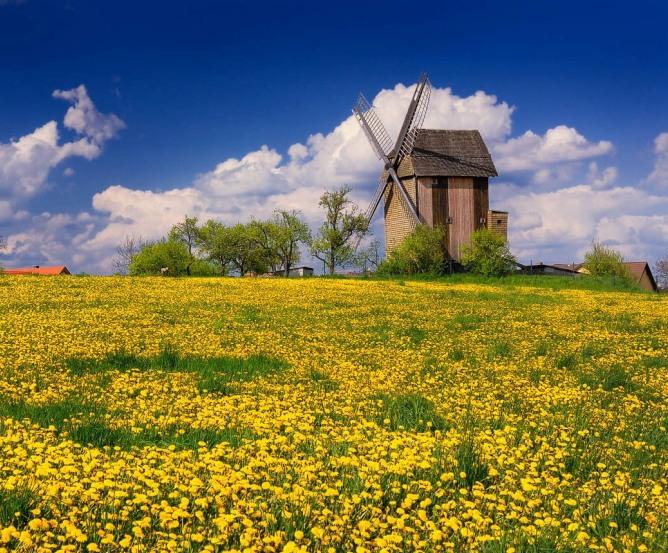 Blockwindmühle Vehlefanz Oberkrämer © Frank Liebke