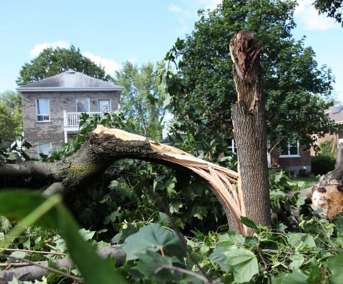 Sturmschaden Wohngebäudeversicherung