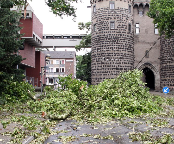 Kaskoschaden durch unmittelbaren Sturmeinfluss